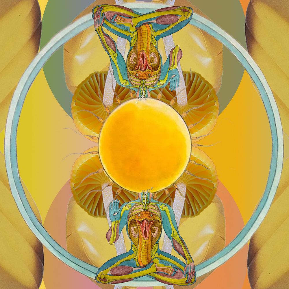 meditatehesitate.jpg