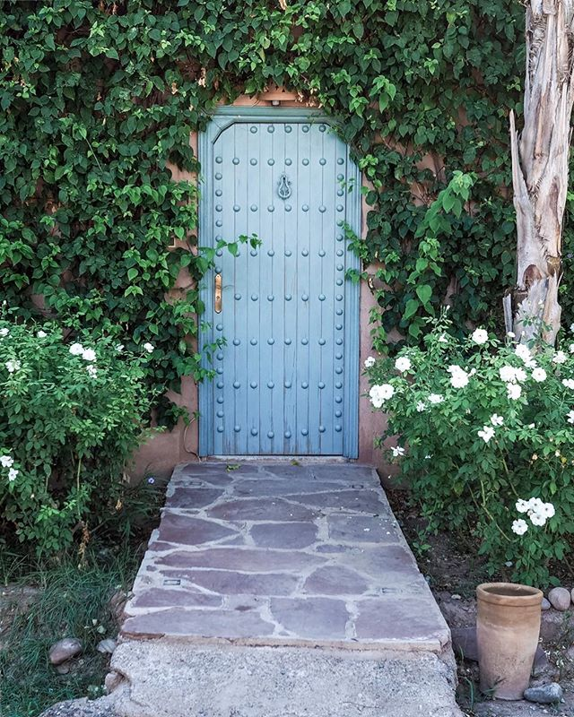 I'm afraid I'm not prepared to embrace autumn yet so sunny Morocco remains in my feed. Now how to recreate this as the entrance to my home 🤔✨ . . . . . . . . . . . . . . . .  #theprettycities#forbestravelguide#iamatraveler#goopgo#mydomainetravels#tlpicks#gglocalgems#verytandc#mycityloves#seemycity#traveldeeper#hello_worldpics#postcardplaces#traveltagged#kings_village#postcardsfromtheworld#culturetrip#bestcitybreaks #insidertravel#mytinyatlas #elledecor#abmlifeisbeautiful#bloooms#lonnymag#inspiredbyflowers#myoklstyle#allthingsbotanical#plantsofinstagram#guardiantravelsnaps#littlestoriesofmylife