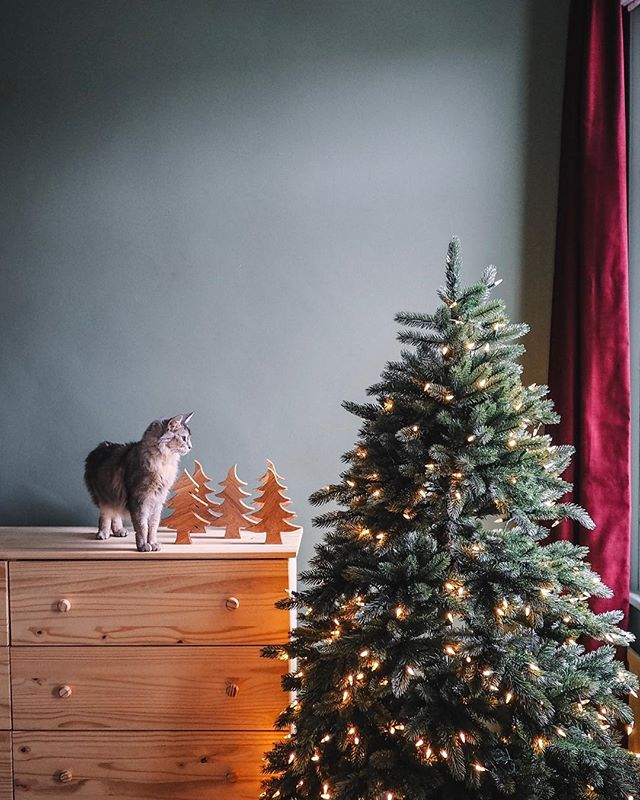 December is here which means it's Christmas tree time 🎄 This year I wanted an artificial tree for my home so was super excited to collaborate with @balsamhilluk I chose the Vermont White Spruce Tree with clear LED lights and couldn't be happier. I've paired it with a galvanized tree skirt which is super pretty. It's so beautiful and importantly both Matilda and Ripley approve. To see their huge range of artificial trees check out the link in my profile [gifted] . . . . . . . .. . #BalsamHill#BalsamHillUK#shoplinkinbio#Christmastrends#BHUKFestiveFamilyChristmas#BHUKFestiveFamilyChristmasUK##persuepretty#focalmarked#MyOKLstyle#sodomino#lonnyliving#lonnymag#homewithrue#apartmenttherapy#elledecor#dslooking#theeverygirlathome#myhomevibe#toplondonphoto#anthropologie#goop#embracingtheseasons#ChristmasinLondon#christmasdecor#mysecretlondon#holidaydecor#christmasdecorating#lightandbright#dominomag#christmastree🎄