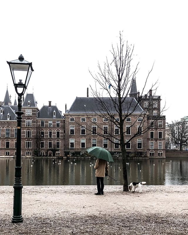 Hello from The Hague 🙋🏼‍♀️ there is something quite magical about visiting a new city just before Christmas and The Hague didn't disappoint. I was lucky enough to fly out from City airport on Friday so missed the chaos of Gatwick. But as I was boarding I realised that I had misplaced my wallet 🤦🏼‍♀️ After much frantic ringing around from the airport lounge, it was found and I was off to explore a new city with only Apple Pay and Western union at hand. How to bring some excitement into your life! But it's been fun and I can't wait to share more of my adventure over the coming days . . . . . . . . . . . . . . . . . . . . #theprettycities#living_europe#iamatraveler#topamsterdamphoto#postcardsfromtheworld#goopgo#kings_villages#seemycity#suitcasetravels#mycityloves#forbestravelguide#tlpicks#mydomainetravels#traveldeeper#bitsofbuildings#topeuropephoto#map_of_europe#bestcitybreaks#igersholland#whpmagical#thehague#thehaguecity#denhaag#nederland#thisisthehague#ladieswhotravel#dametravel#damestravel#denhaagcity#pathport