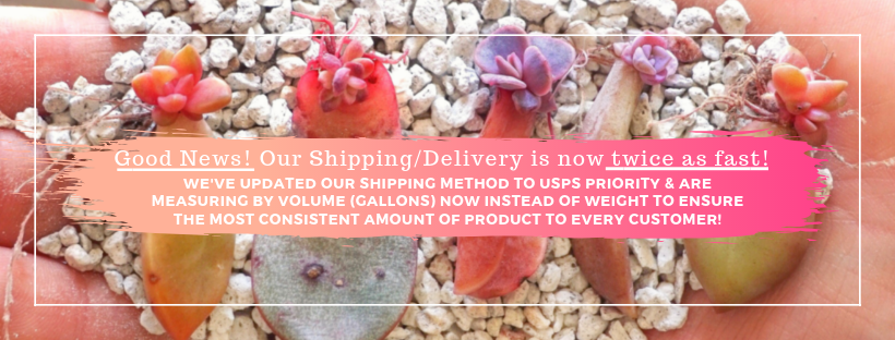 Good News! Our Shipping_Delivery is twice as fast now!.png