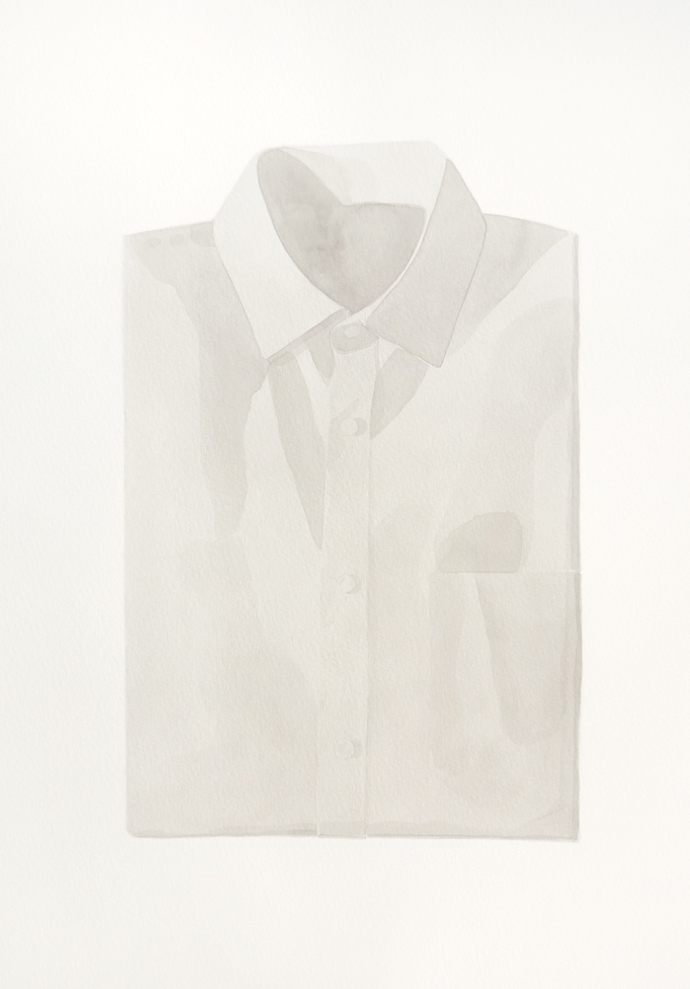 Camisa, 2010
