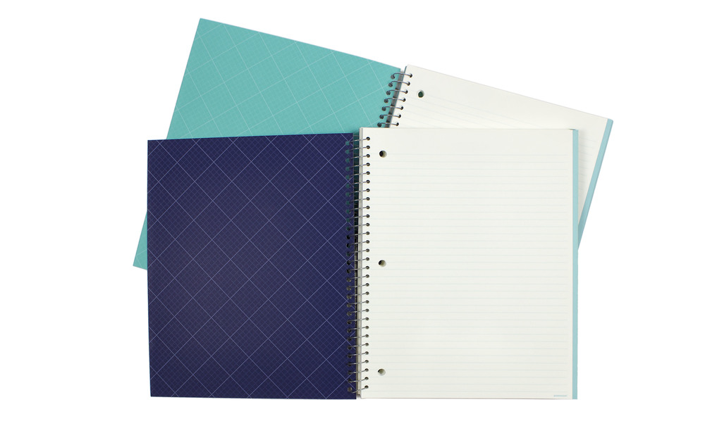 3-Subject Notebook // Greenroom, available at Target