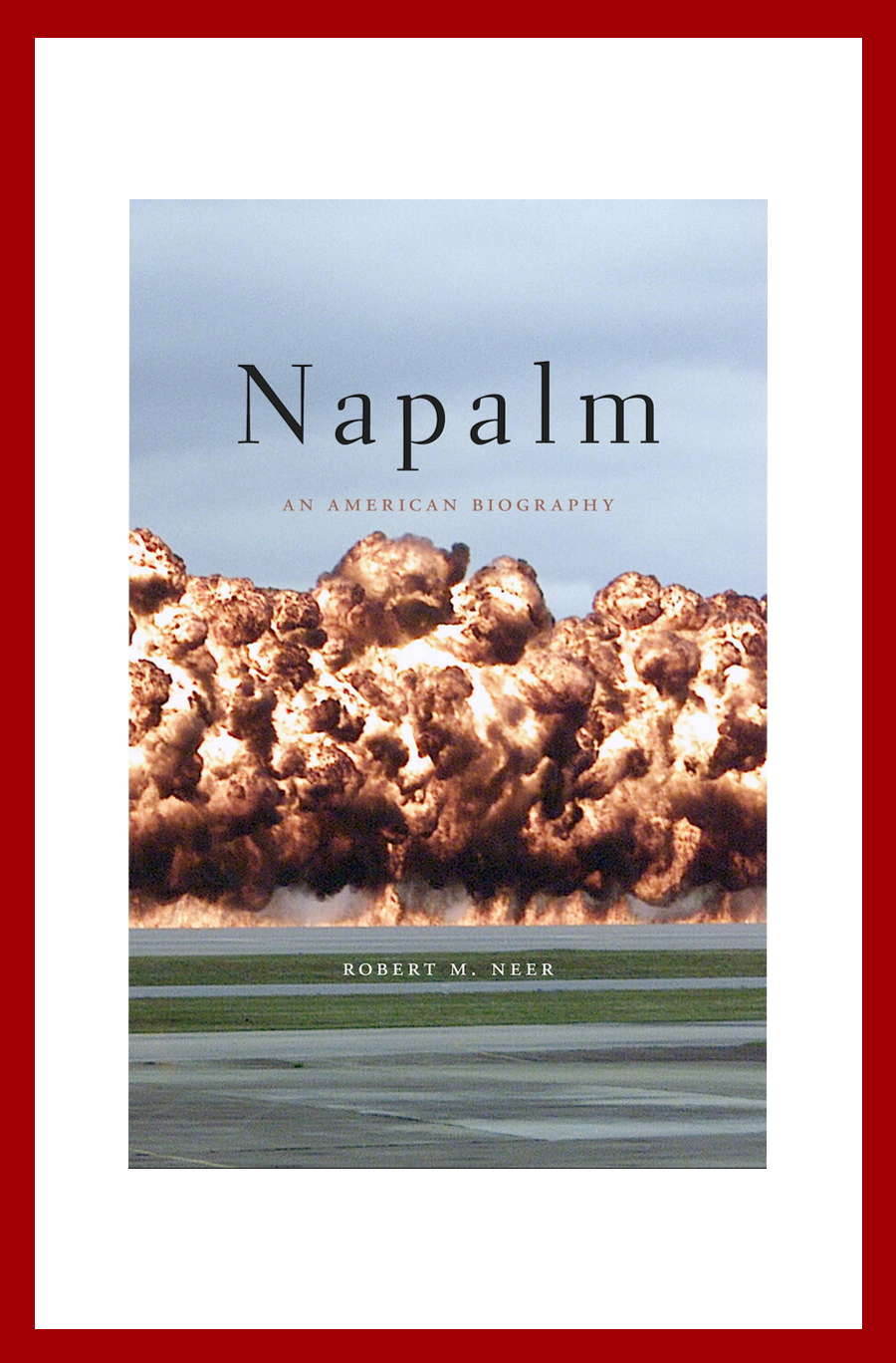 Napalm, An American Biography