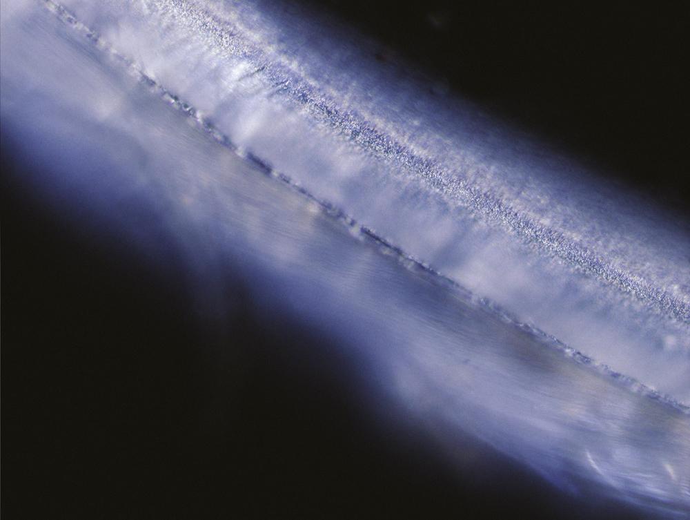 Microscope-2.jpg