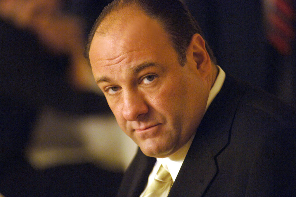 """[Kathryn Gately] was very smart because she knew how to, not just push buttons, but to push buttons in a good way.""    James Gandolfini -  The Sorpranos, All the King's Men, The Mexican - From an interview on  Inside the Actor's Studio"