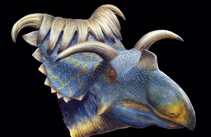 Kosmoceratops-horned-dino-002.jpg