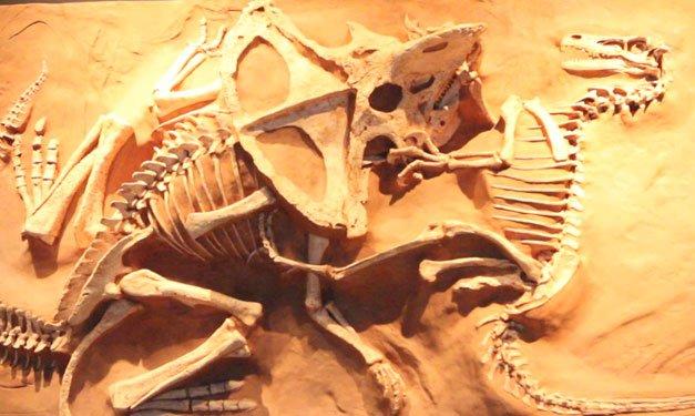 DinosaursTheLostWorldCranbrookInstituteofScienceBloomfield-ca1c82d5.jpeg