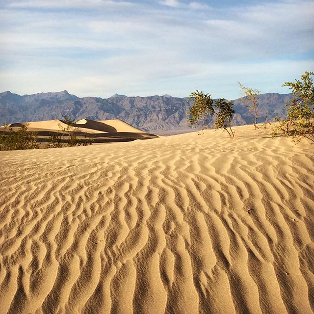 Death Valley sand dunes... #desert #california #sanddunes #west #deathvalley #nature #deathvalleynationalpark