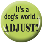 It's a dog's world...adjust