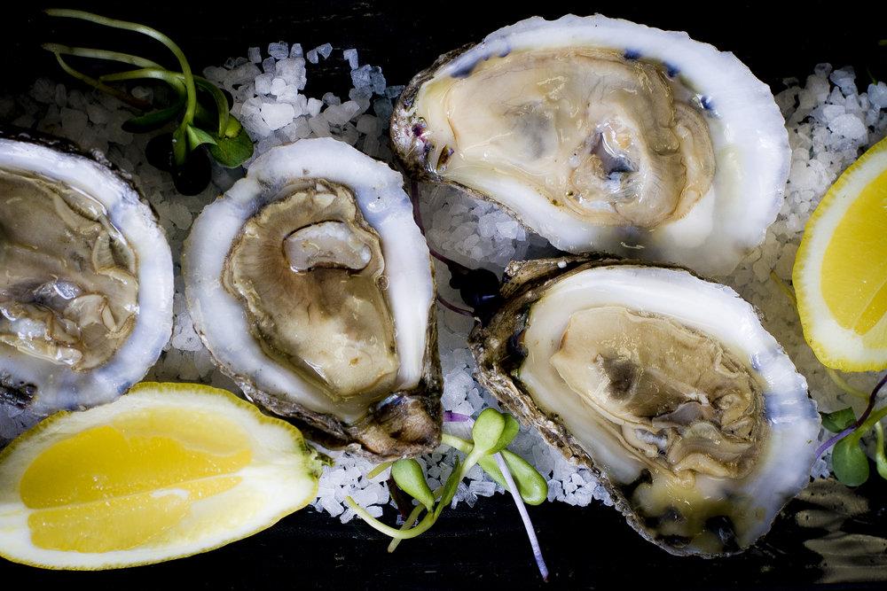 Oysters#2.jpg