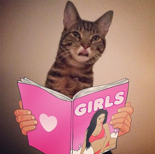 harris girls.jpg