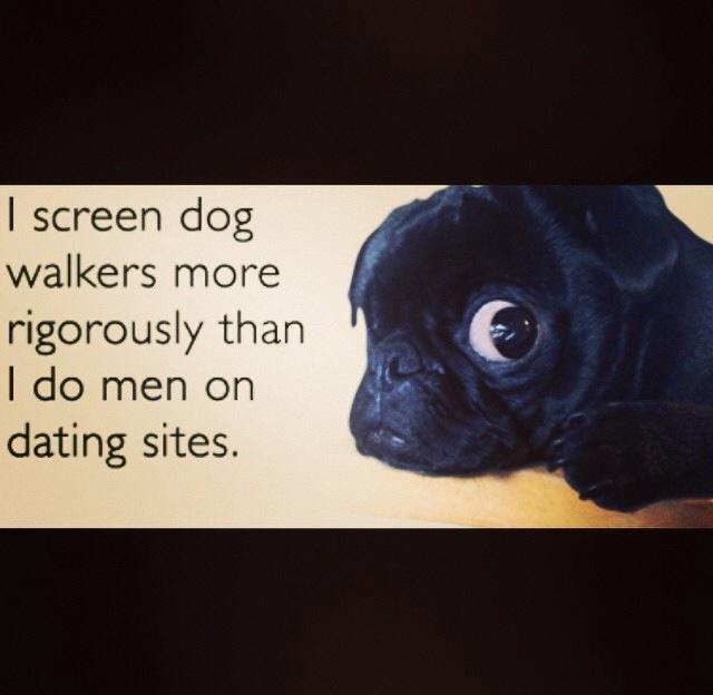 screen dog walkers.jpg
