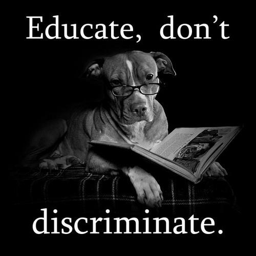 Educate don't discriminate.jpg
