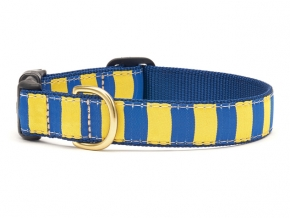 UpCountry-Go-Team-Blue-Yellow-Stripe-dog-collar-290x218.jpg