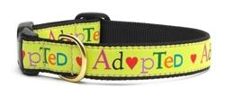 adopted.jpg