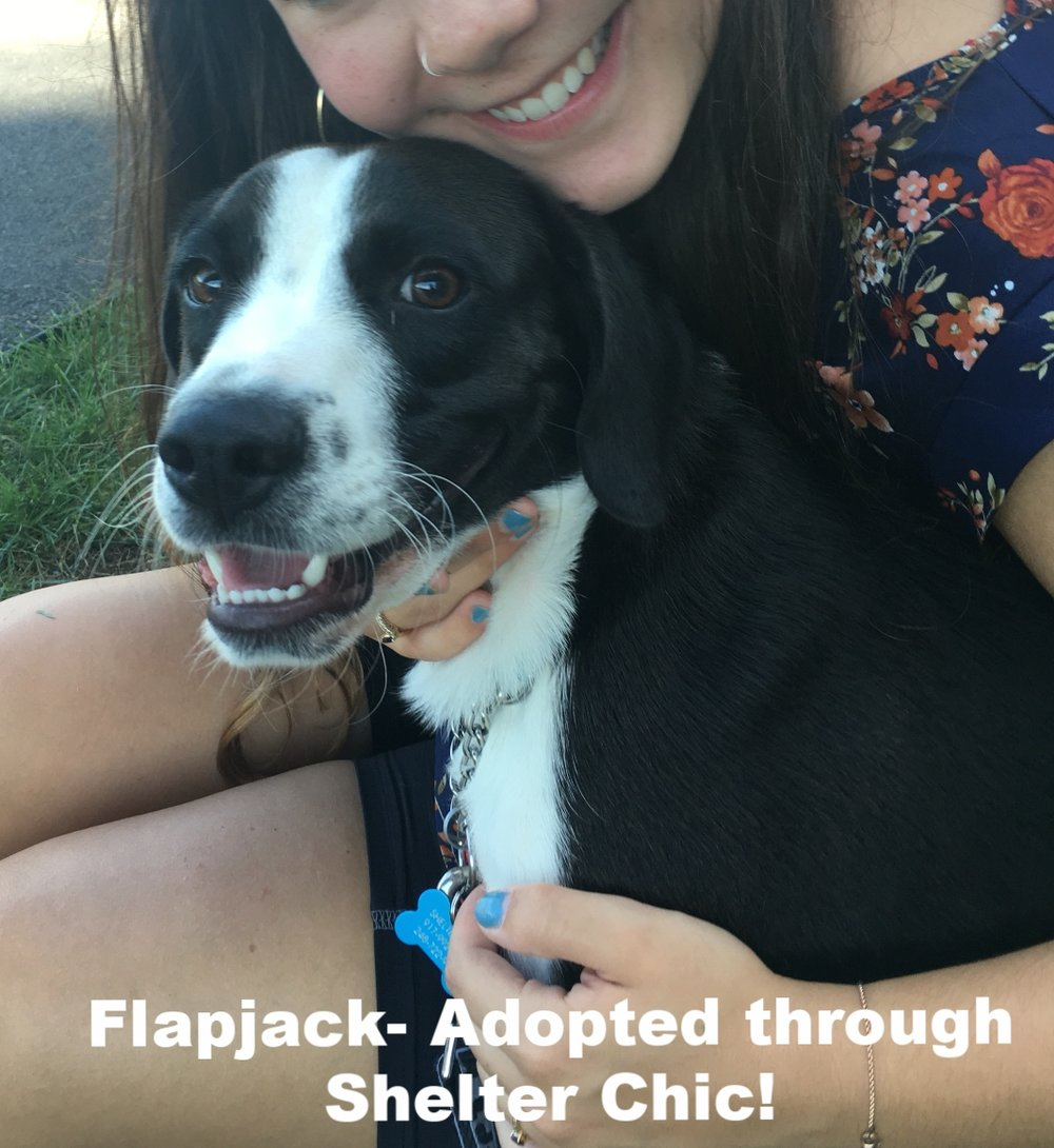Flaojack Adopted.PNG