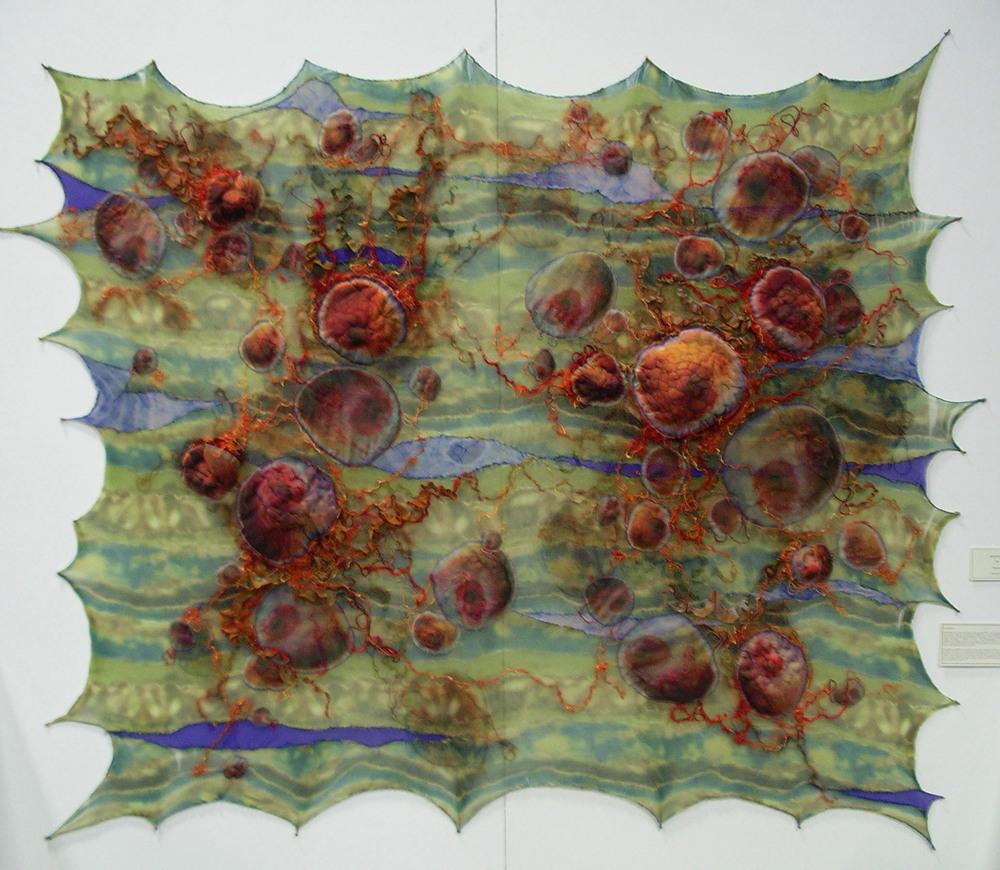 Medusazoa (2010)