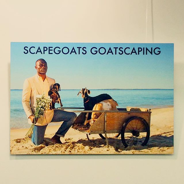 On display now at the Vineyard Haven Library: The Ads and Art of Scapegoats. Twenty six pieces, by yours truly, running through the month of May! ••••••••••••••••••• All prints on metal and available for purchase. A portion of sales will go to local animal rescues. Please message for details.  #goatscaping #art #marthasvineyard #goatlife #islandlife #vineyardlife #mv #goats #advertising #travel #lifestyle #landscaping #agriculture #goat #photography #show #getit #style #mvstyle #artshow #artwork #iamamodernfarmer #countryliving #beach #summer #babygoats #fashion #girlscreating