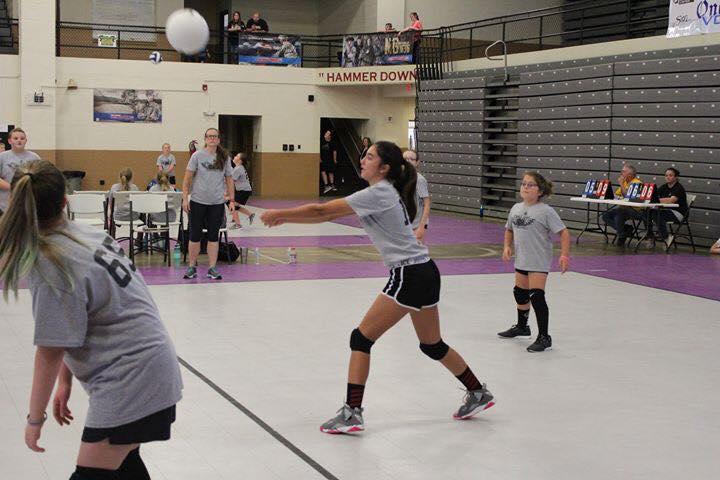 Volleyball 4.jpg