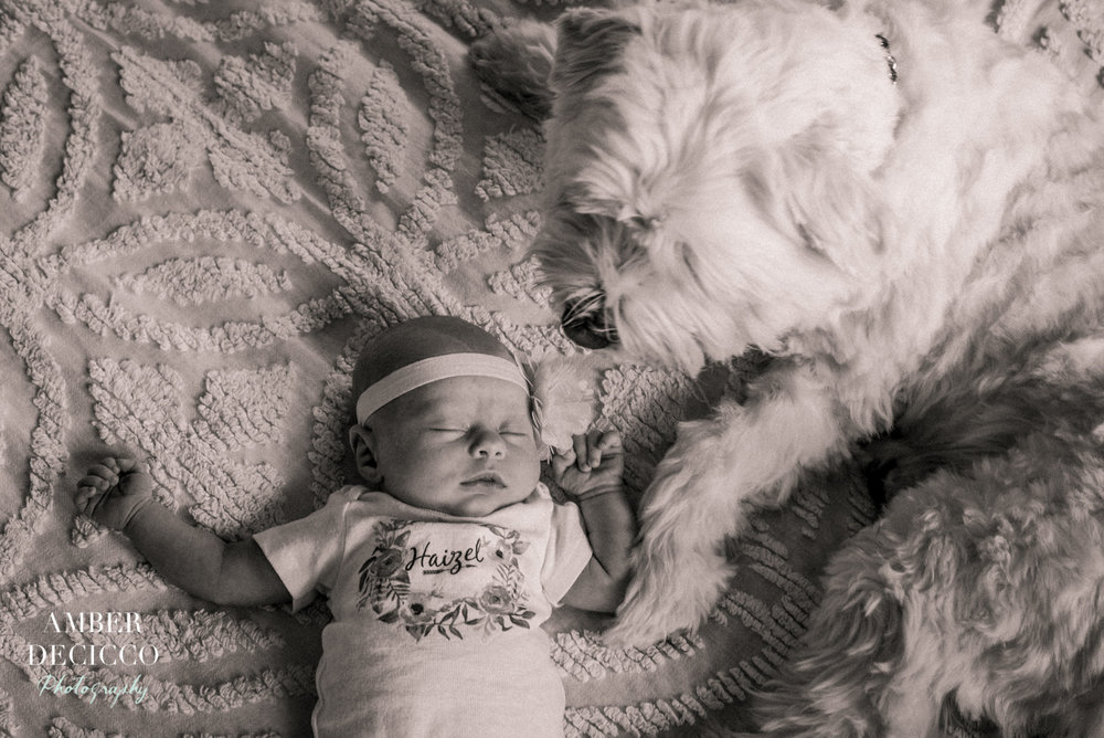 haizel-newborn-adeciccophoto-5011.jpg