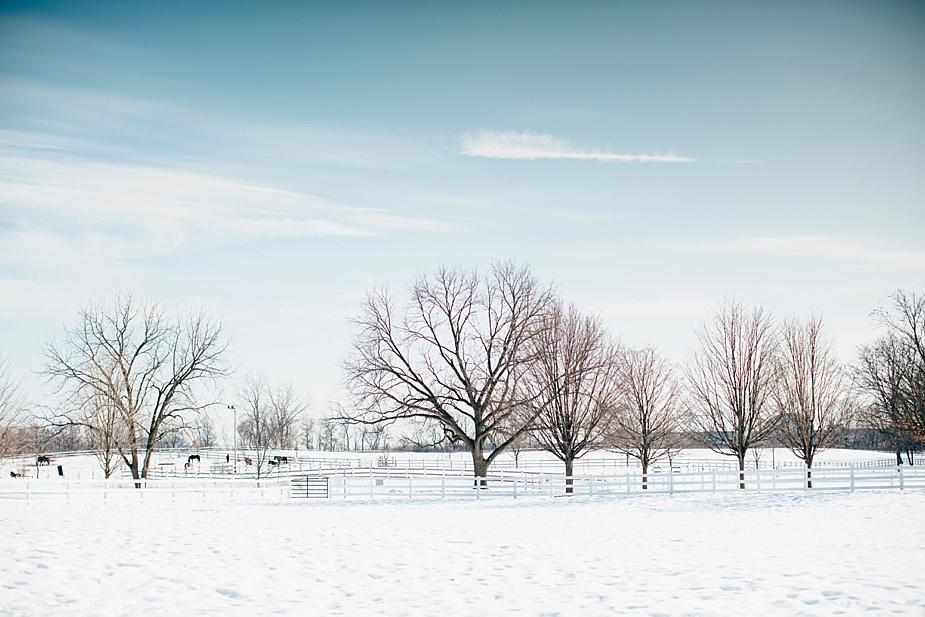 Cody+Ashley-Denada-House-Winter-Wedding_0005.jpg