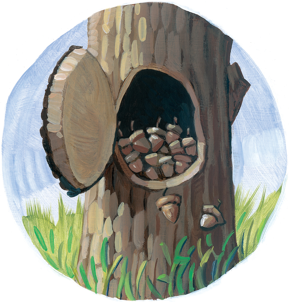 "Nuts   8"" wide. Oil on illustration board, 2012.   $75.   Buy this painting."