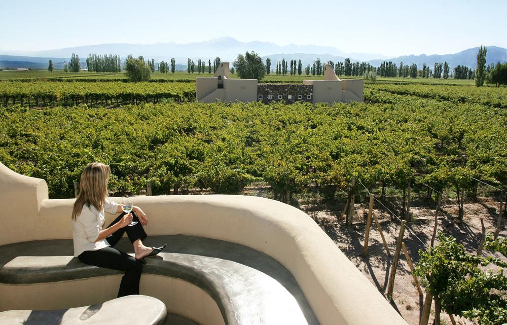 wine in argentina mendoza 232.jpg
