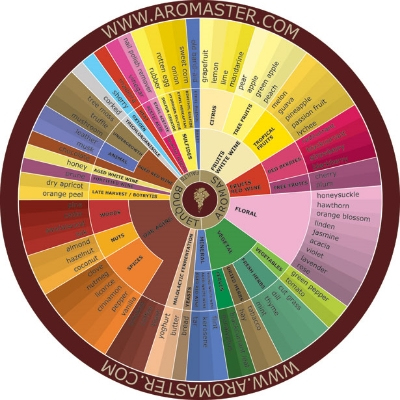 An aroma wheel provided by www.aromamaster.com