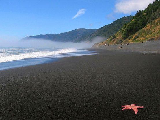 black sand beach california.jpg