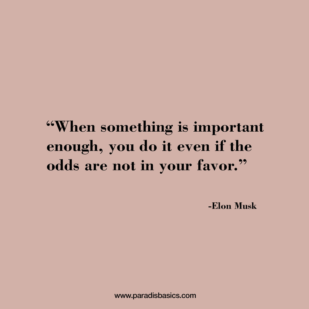 """When something is important enough, you do it even if the odds are not in your favor."" Elon Musk"