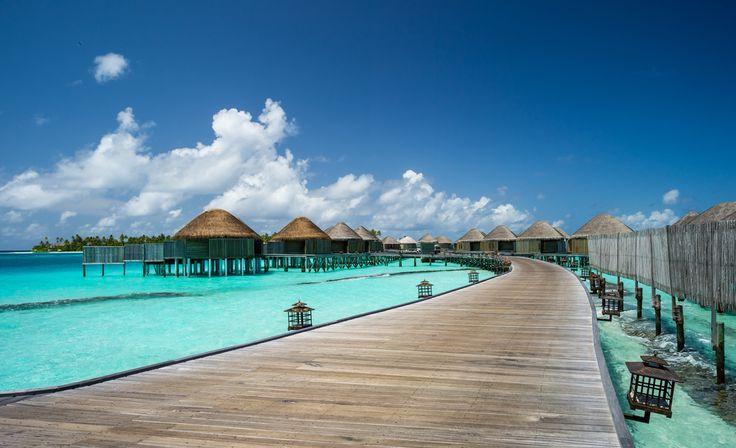 maldives villas .jpg