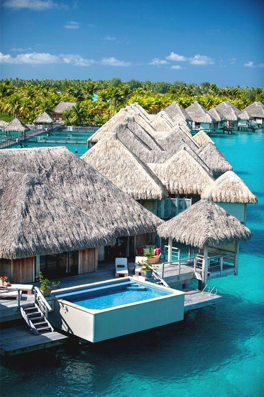 maldives vacation.jpg