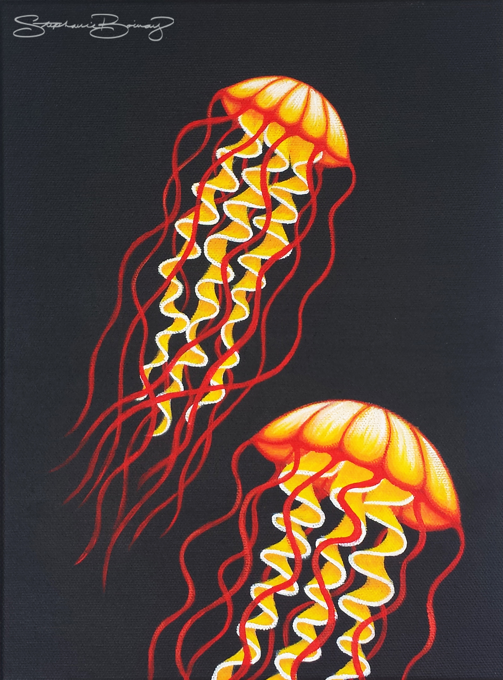 Candycorn Jellyfish