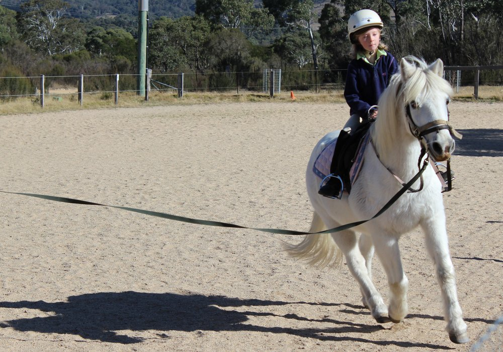 Hannah Costigan, 6 years old & learning to canter on Comet.