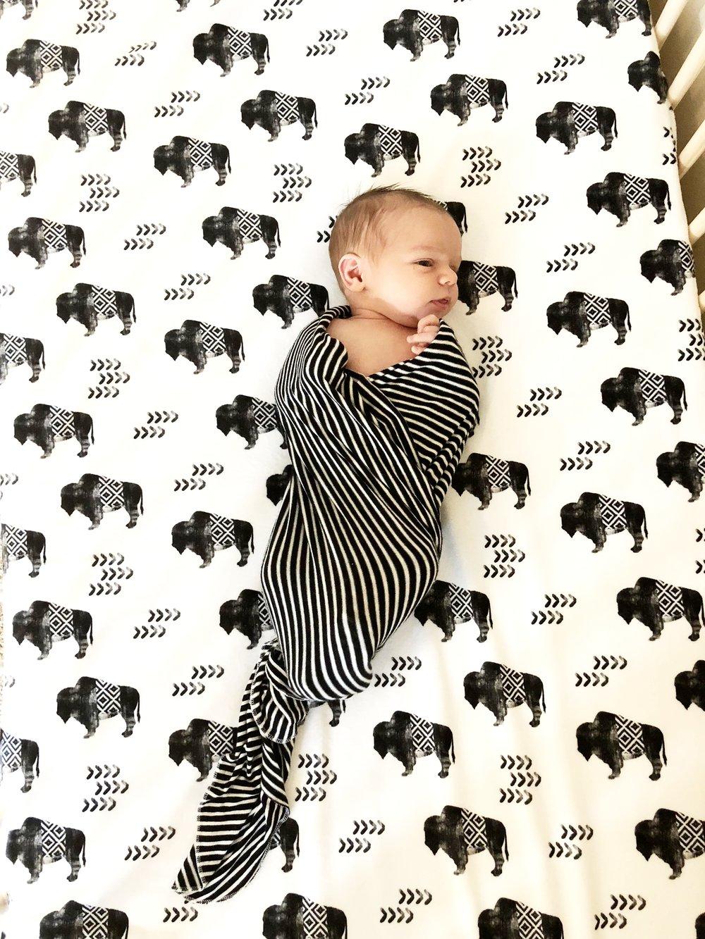 Buffalo Crib Sheet -