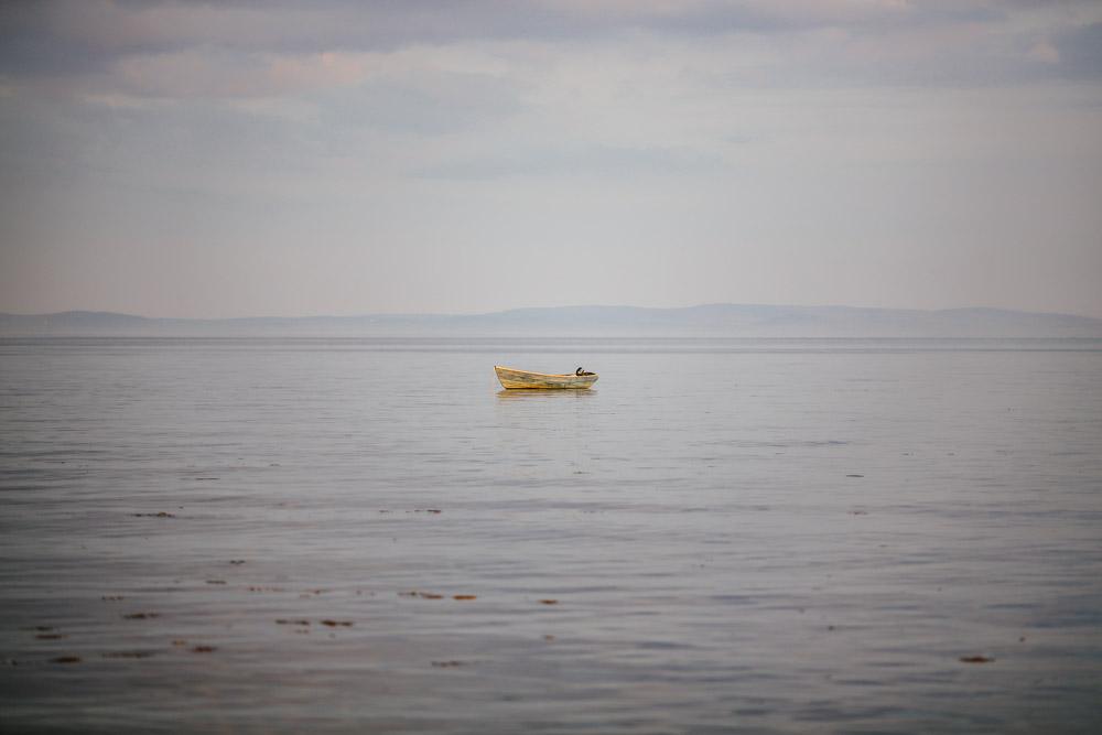 Isle-Of-Arran-TAOSA-113.jpg