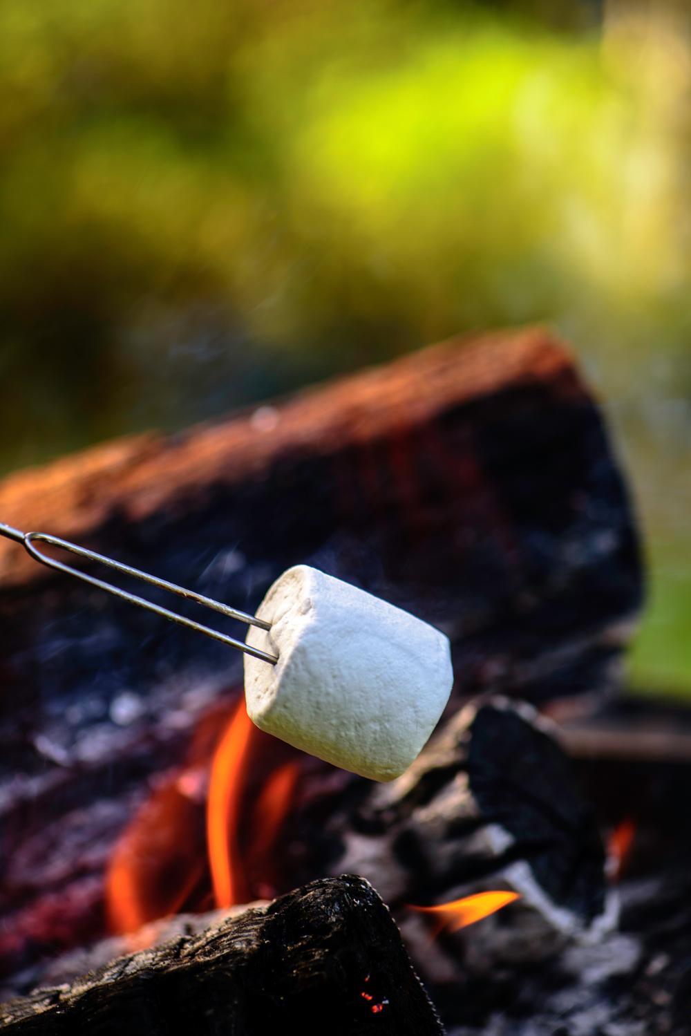 campfire smore roasting