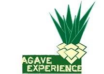 agavestatic1.squarespace.com.jpg
