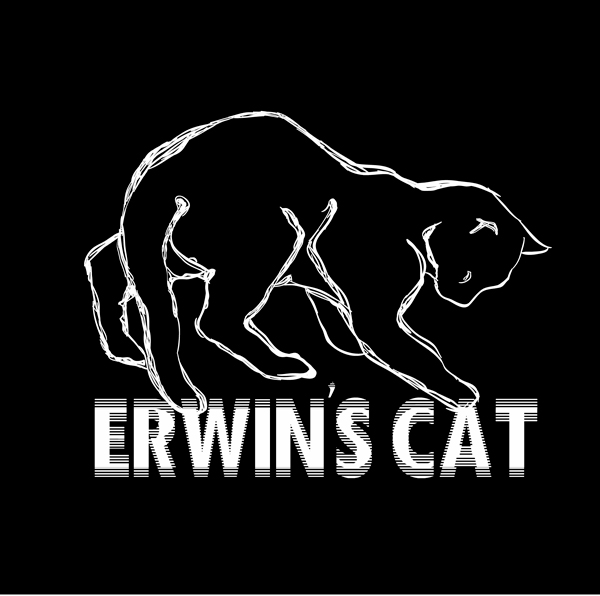 Erwin's Cat Video