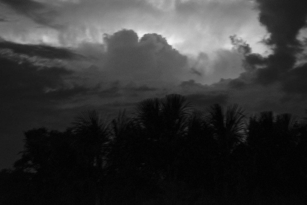 20170210-Ariane-Cassidy-Hannah-Amazon-jungle-FUJIFILM-X-Pro2-0587-Edit.jpg