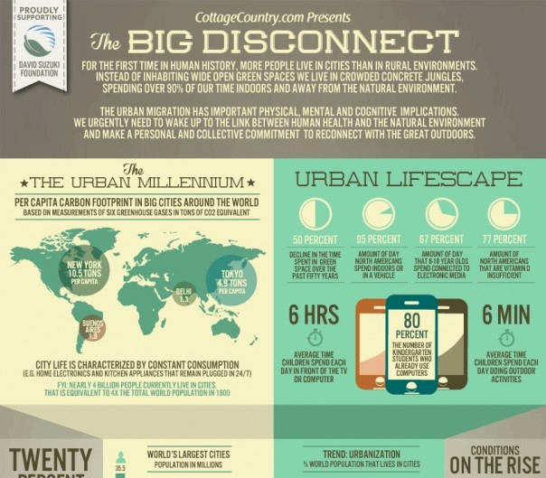 the-big-disconnect-infographic2