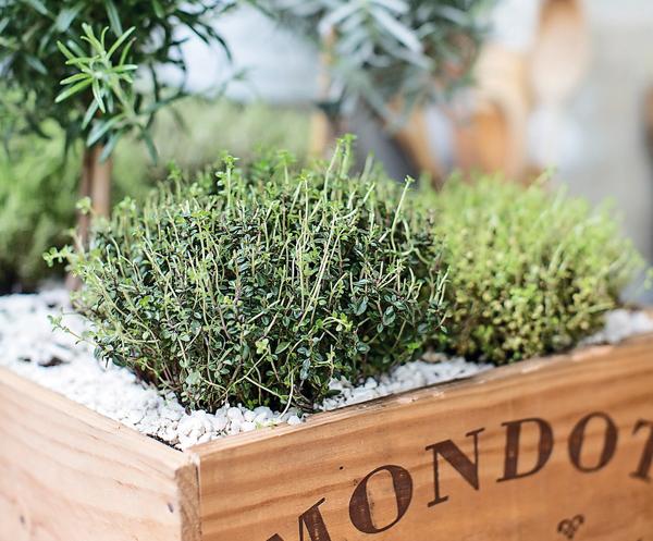 Create your own indoor herb garden the simple things for Make your own indoor garden