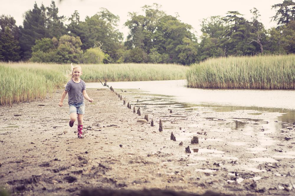 Ponddipping3.jpg