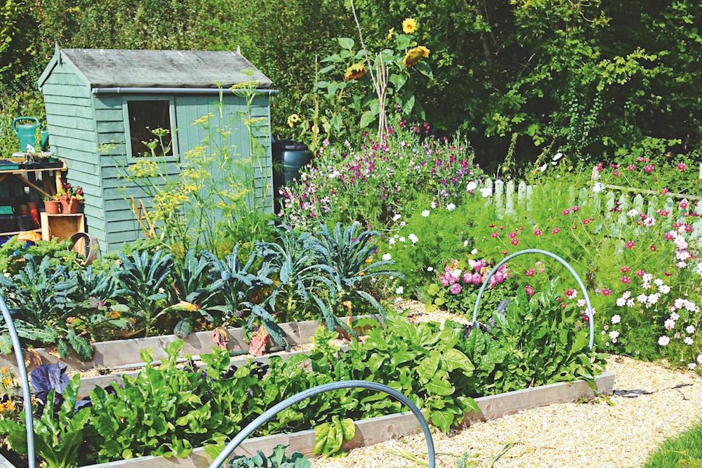 Moon Planting Biodynamic Gardening The Simple Things