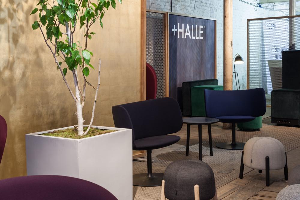 +Halle at CDW2015_5.jpg