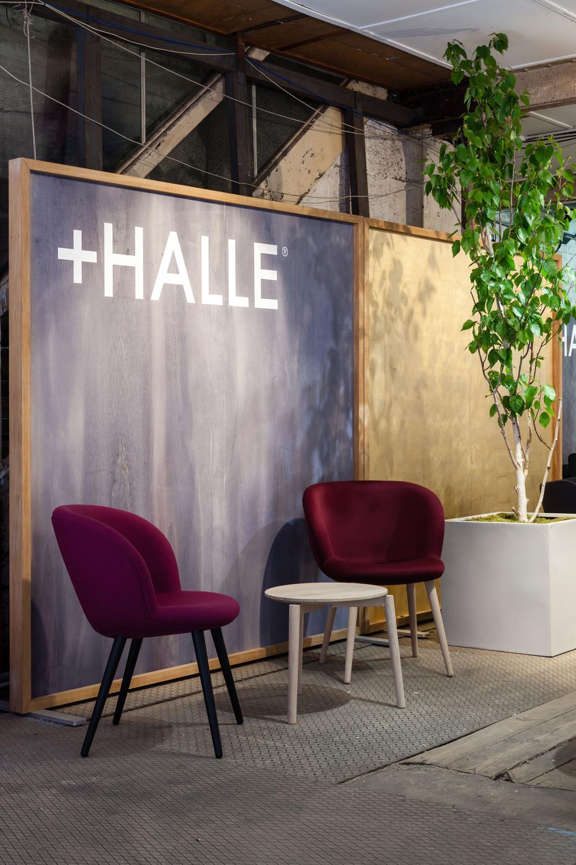 +Halle at CDW2015_6.jpg