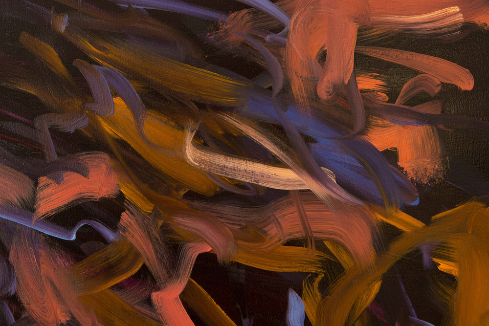 Untitled no 1  (dark ground)  detail  2015  oil on canvas  146 x 186 cm