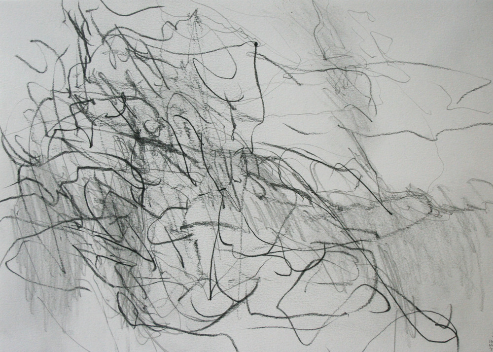 Left hand Drawing III  November  2015  graphite on paper  21 x 30 cm