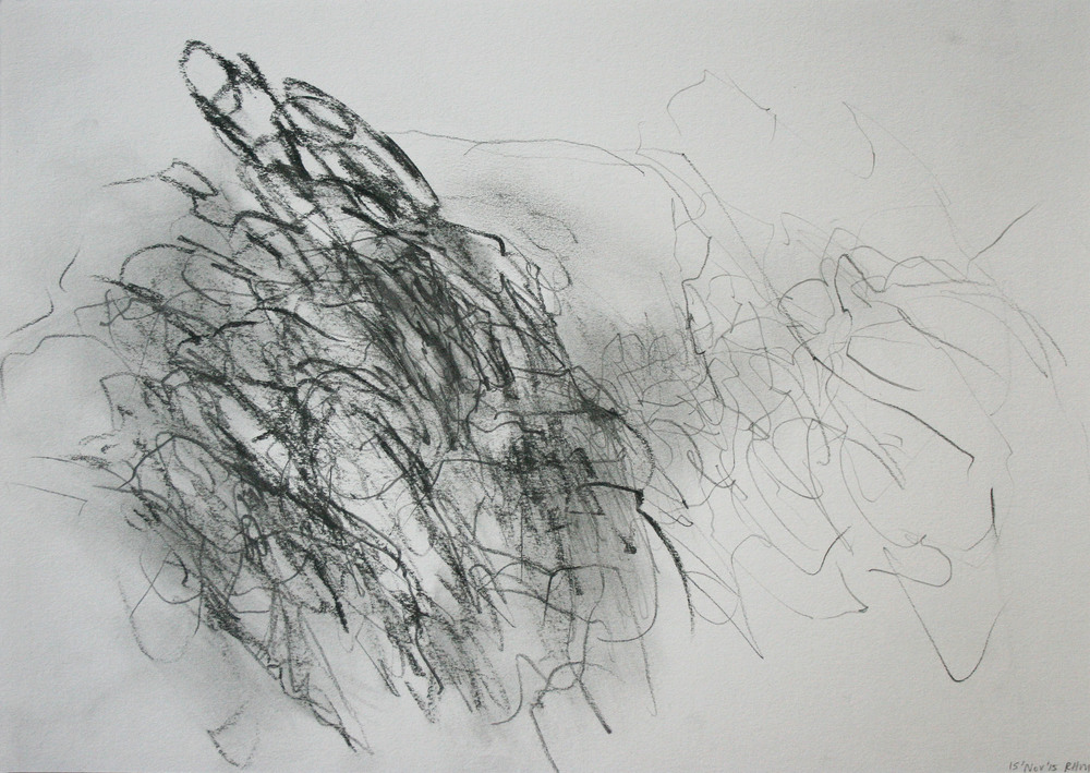 Left hand Drawing VI  November  2015  graphite on paper  21 x 30 cm